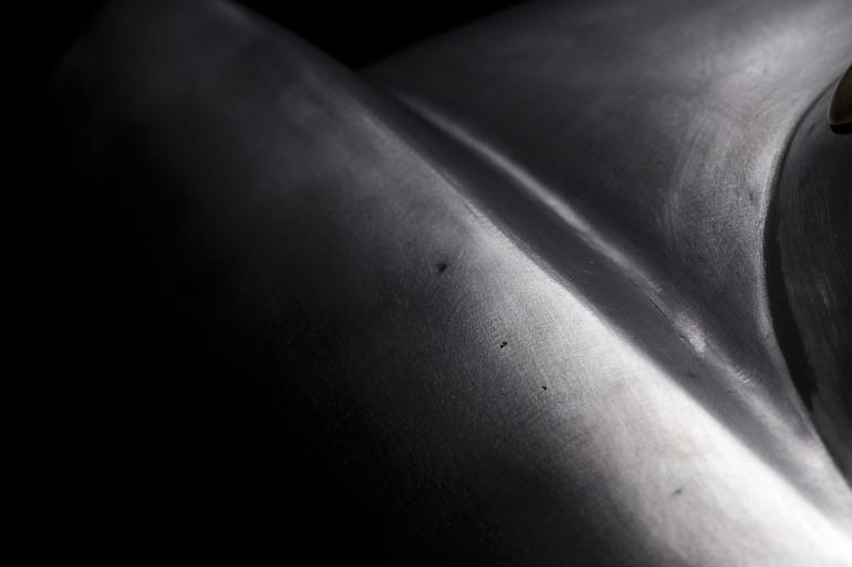 Turin's Scorpion: 1953 Abarth Ghia restored to former showcar status - slide 8