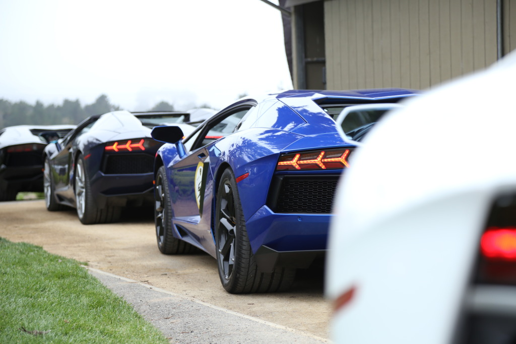 A flock of Aventadors awaiting launch orders